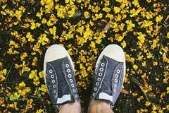 Folâtrez les chaussures d'espadrilles sur la terre, explorez le concept du monde Photos stock