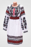 folclore nacional fêmea da camisa de vestido, um traje popular Ucrânia, no fundo do branco cinzento Fotos de Stock