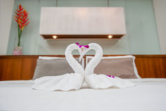 Fold Towel Swan Stock Images