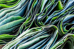 Folded Banana Leaves Royalty Free Stock Images