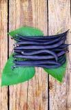 Folded neatly asparagus Stock Photos