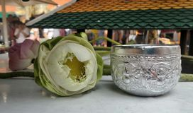 Folded petals sacred lotus and drinking water bowl for paying respect to Buddha  image Royalty Free Stock Image