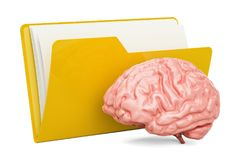 Folder computer icon with human brain, 3D rendering. Isolated on white background Royalty Free Stock Images