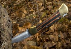 Folding knife. Hunting knife that's in a log in the fall stock image