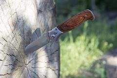 Folding knife stuck in a wooden log, close-up stock photo