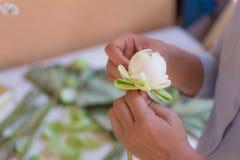 folding lotus petal Stock Photo