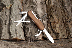 Folding multipurpose knife Stock Image