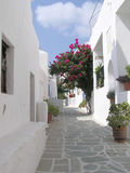 Folegandros island, Greece. Traditional house in Folegandros island, Greece Stock Photo