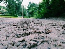 Folgen Sie dem Weg von Reifenkennzeichen stockfotografie
