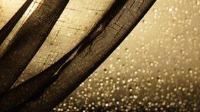 Folgender Vorhang mit Regentröpfchen auf einem Fenster hinten Stockfotografie