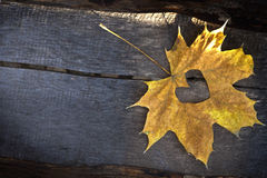 Folha amarela do outono com com backgound de madeira do heartover Imagens de Stock Royalty Free