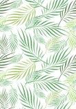 Folha Art Seamless Pattern do coco ilustração do vetor