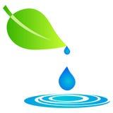 Folha com gotas da água ilustração royalty free