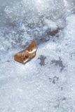 Folha congelada no gelo Fotografia de Stock Royalty Free