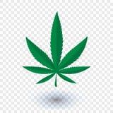 Folha da marijuana do cannabis ilustração royalty free