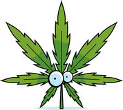Folha da marijuana dos desenhos animados Imagens de Stock Royalty Free