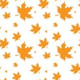 Folha de bordo amarela Autumn Seamless Pattern Imagem de Stock