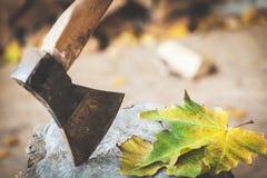 Folha de bordo dois que encontra-se no coto de árvore, que cola o machado Fotografia de Stock