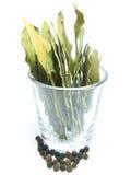 Folha de louro em um vidro Fotografia de Stock Royalty Free