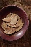 Folha de louro, erva secada em uma bacia Imagem de Stock Royalty Free