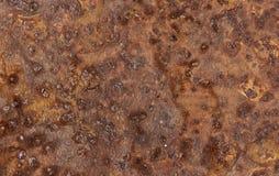 A folha de metal corroeu a textura significativa oxidada oxidada do fundo imagem de stock