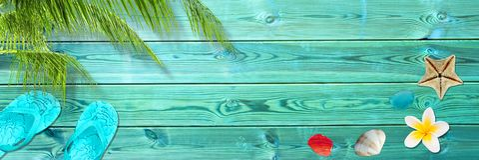 Folha de palmeira, falhanços de aleta e conchas do mar em pranchas de madeira azuis, praia panorâmico e fundo do verão imagens de stock