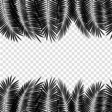 Folha de palmeira preta no fundo branco Ilustração do vetor Imagem de Stock