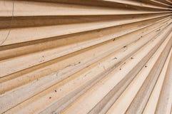 Folha de palmeira secada do açúcar Imagens de Stock