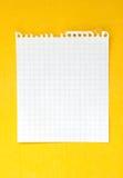 Folha de papel Fotografia de Stock Royalty Free