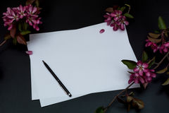 Folha de papel branca pura, a pena e flores cor-de-rosa em um fundo preto Fotos de Stock Royalty Free