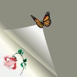 Folha de papel com uma rosa e a borboleta Fotos de Stock