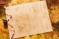 Folha de papel da placa do vintage velha nas folhas de bordo coloridas thanksgiving Fotos de Stock Royalty Free