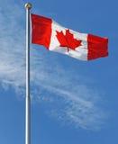 A folha de plátano - bandeira nacional de Canadá Fotografia de Stock