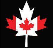 Folha de plátano canadense Imagem de Stock Royalty Free
