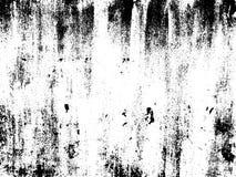 Folha de prova afligida da textura Fundo do vetor ilustração do vetor