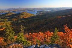 Folha de queda em Nova Inglaterra fotografia de stock royalty free