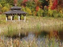 Folha de queda na lagoa Foto de Stock Royalty Free