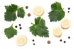 Folha do aipo isolada no fundo branco Aipo isolado no branco Alimento saudável Foto de Stock