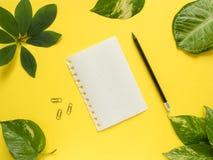 Folha do bloco de notas com lápis no centro no fundo amarelo com folhas verdes Fotos de Stock