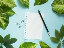 Folha do bloco de notas com lápis no centro no fundo azul com folhas verdes Fotografia de Stock Royalty Free