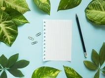 Folha do bloco de notas com lápis no centro no fundo azul com folhas verdes Imagem de Stock Royalty Free