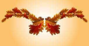 Folha do carvalho do outono e festão da bolota Imagens de Stock Royalty Free