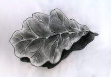 Folha do carvalho - esboço ilustração stock