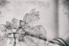 Folha do carvalho do outono em um prato de vidro que está em uma tabela branca fotografia de stock