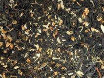 Folha do chá verde do jasmim foto de stock royalty free