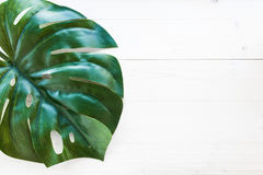 folha do monstera no fundo de madeira Fotos de Stock Royalty Free