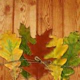 Folha do outono e textura de madeira Fotografia de Stock Royalty Free