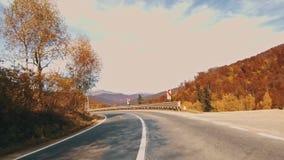 Folha do outono na floresta com estrada filme