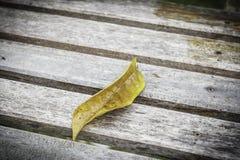 Folha do outono no assoalho de madeira Imagem de Stock Royalty Free