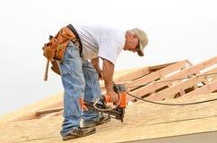 Folha do telhado Imagens de Stock